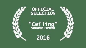 festivalselection_ceiling